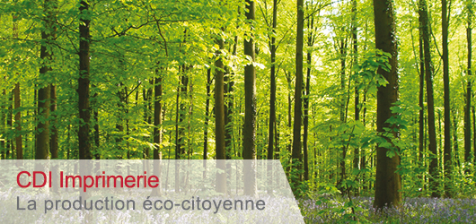 La production eco-citoyenne